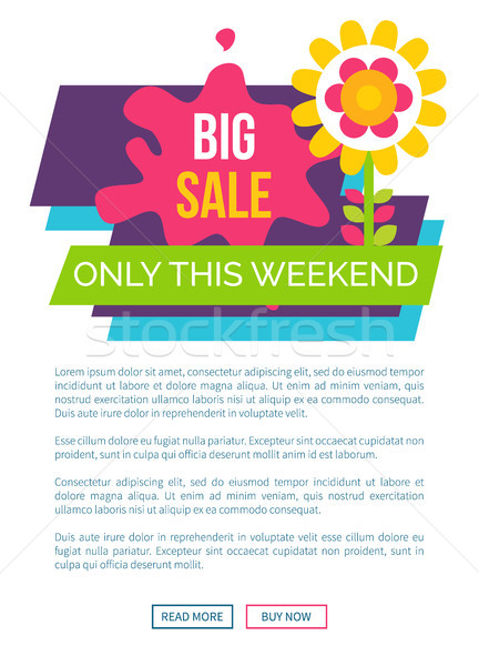 Only Weekend Big Sale Promo Label with Blooming Stock photo © robuart
