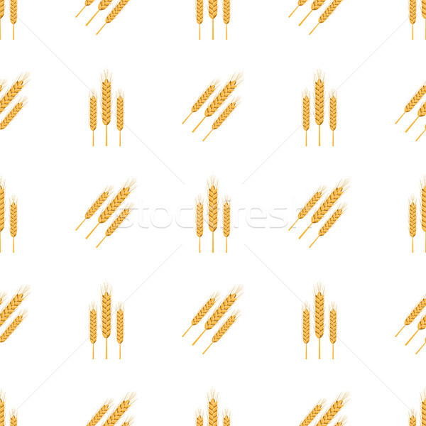 Golden Bread Spikes from Field Seamless Patern Stock photo © robuart