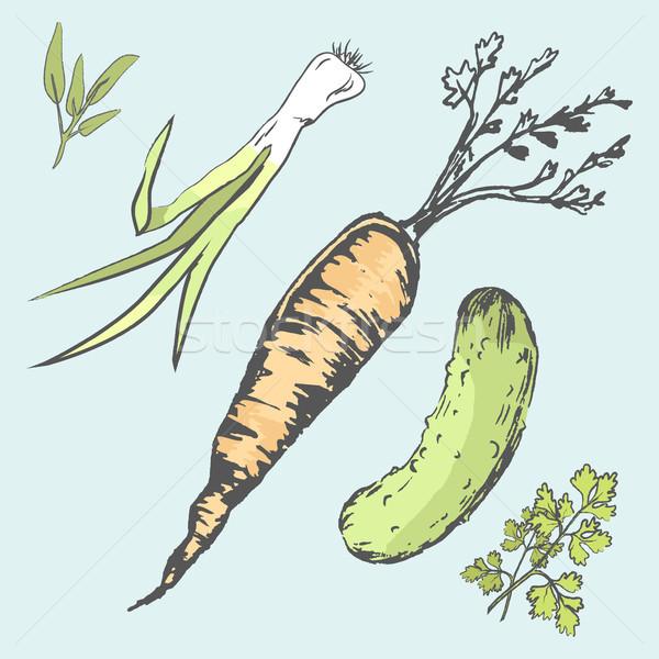 Crujiente zanahoria verde pepino frescos Foto stock © robuart