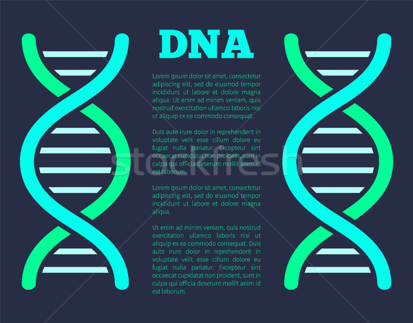 DNA Poster with Headline, Vector Illustration Stock photo © robuart
