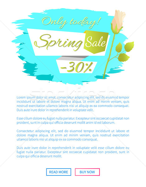 Web Poster Spring Sale -30 Off Advertisement Label Stock photo © robuart