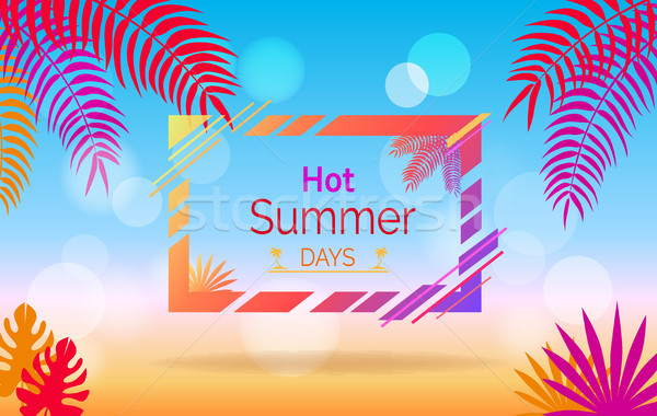 Hot Summer Days Promotional Poster with Leaves Stock photo © robuart