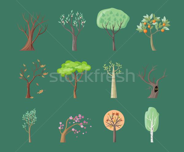 Foto stock: Establecer · árbol · iconos · hojas · verdes · arce