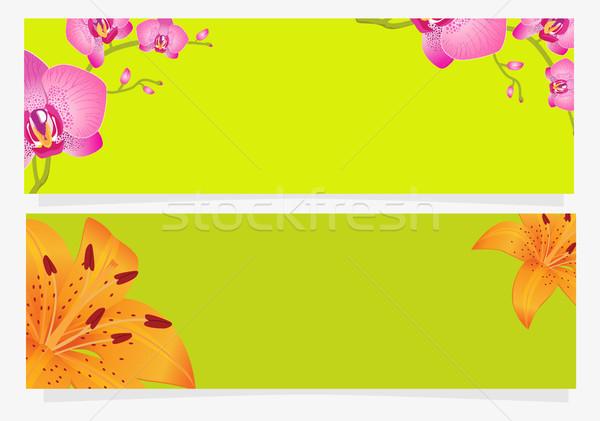 Felice vacanze congratulazione cartolina giglio orchidea Foto d'archivio © robuart