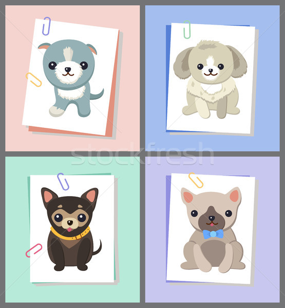 Papers with Dogs Images Set Vector Illustration Stock photo © robuart