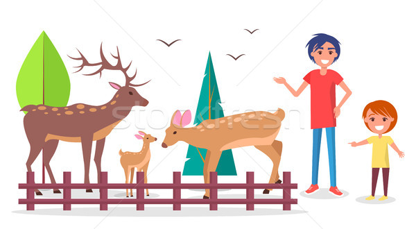 Child with Parent at Zoo near Deers Family Corral Stock photo © robuart