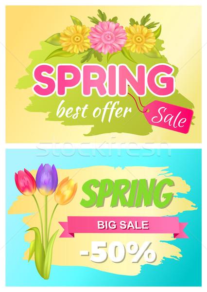 Meilleur proposer printemps vente annonce Daisy Photo stock © robuart