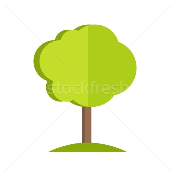 Tree vector illustration in flat style design.  Stock photo © robuart