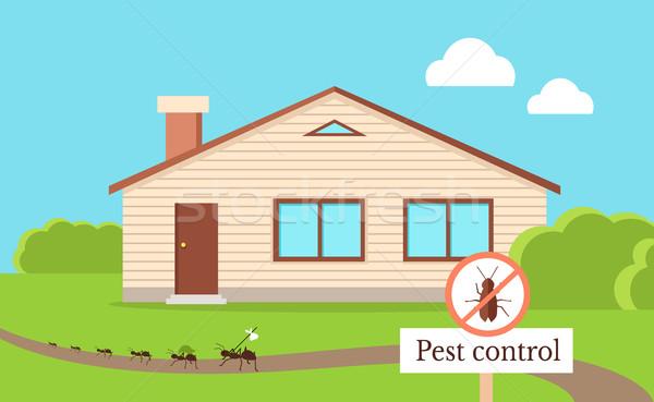 Vektör stil dizayn karıncalar çalıştırmak Stok fotoğraf © robuart