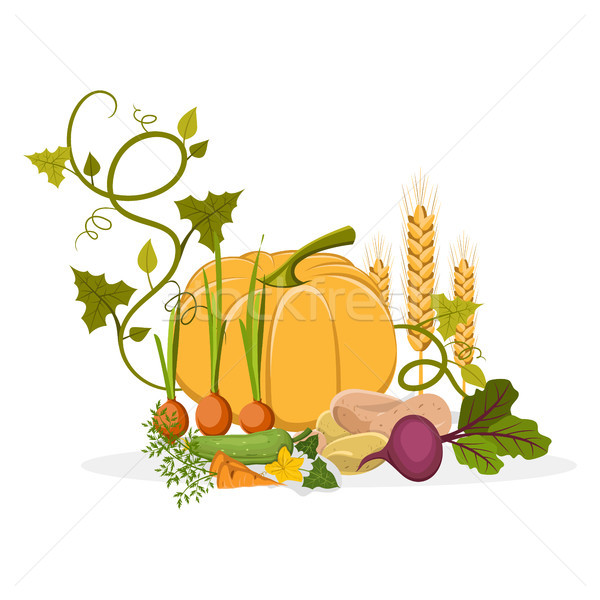 Rich Harvest of Delicious Vegetables and Plants Stock photo © robuart