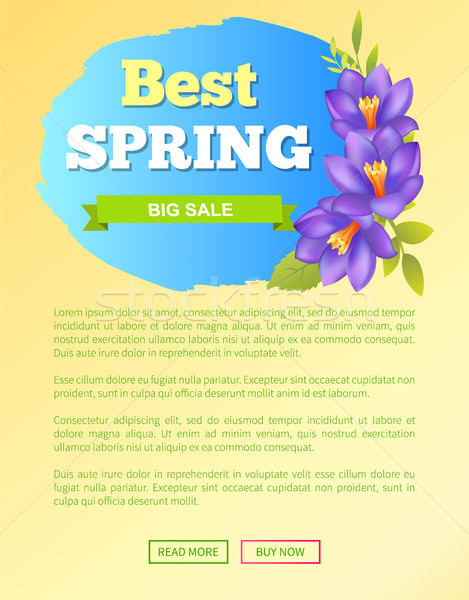 Best Spring Big Sale Off Web Poster Online Buttons Stock photo © robuart