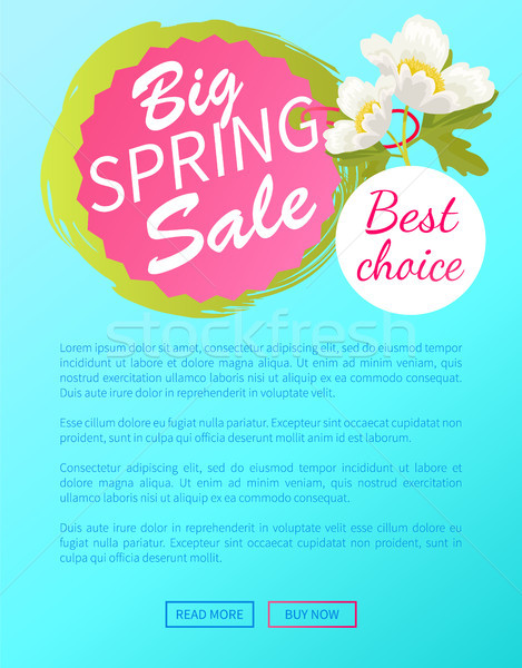 Legjobb választás nagy tavasz vásár el háló Stock fotó © robuart