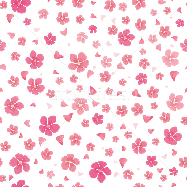 Sakura flores isolado branco completo Foto stock © robuart
