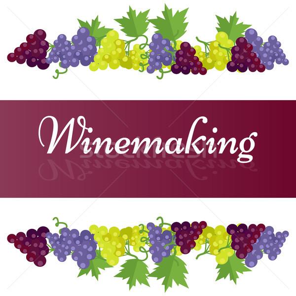 Vinificazione modello poster uva colorato buio Foto d'archivio © robuart