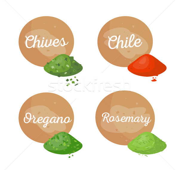 Chives and Chile Spices Set Vector Illustration Stock photo © robuart
