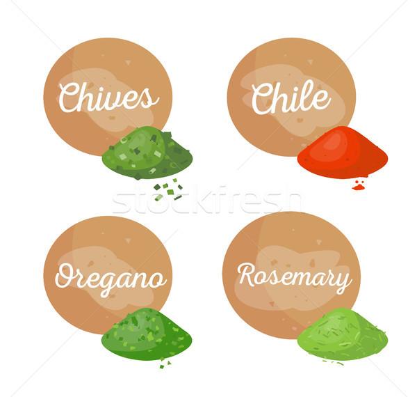 Cebolinha Chile temperos conjunto orégano alecrim Foto stock © robuart