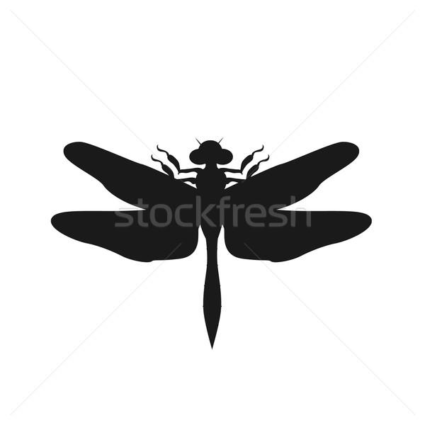Silhueta libélula preto vetor isolado branco Foto stock © robuart