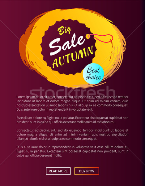 Sprzedaży jesienią wiszący promo etykiety Zdjęcia stock © robuart