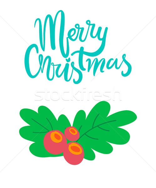 Merry Christmas Postcard Branch of Mistletoe Tree Stock photo © robuart
