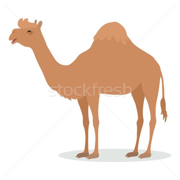 Dromedary Camel Cartoon Icon in Flat Design Stock photo © robuart