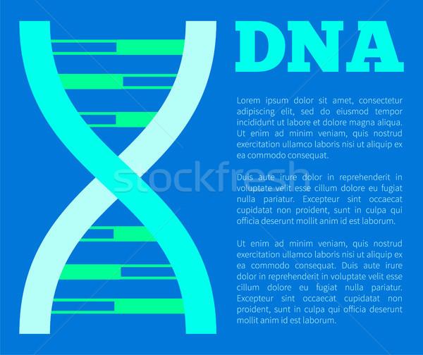 ADN affiche titre structure génétique détaillée Photo stock © robuart