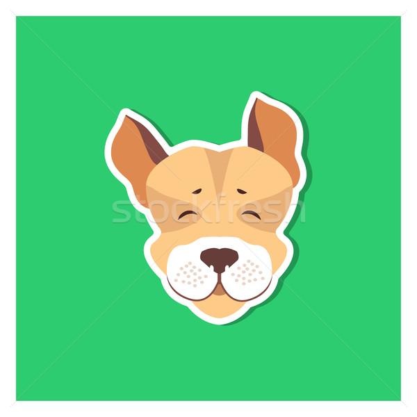 Derűs torkolat jack russell terrier ikon zöld vadászat Stock fotó © robuart