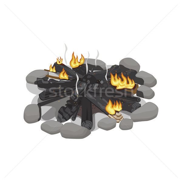 Dark Burnt Firewood with Weak Flame on White. Stock photo © robuart