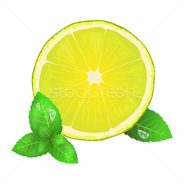 Juicy Lemon or Lime and Leaves of Peppermint Icon Stock photo © robuart