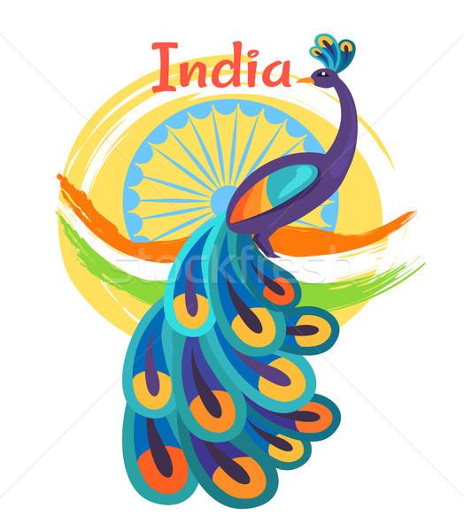 Nap poszter színes páva ünnep indiai Stock fotó © robuart