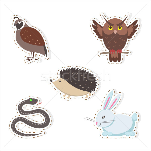 Cute Cartoon Forest Animals Stickers Collection Stock photo © robuart