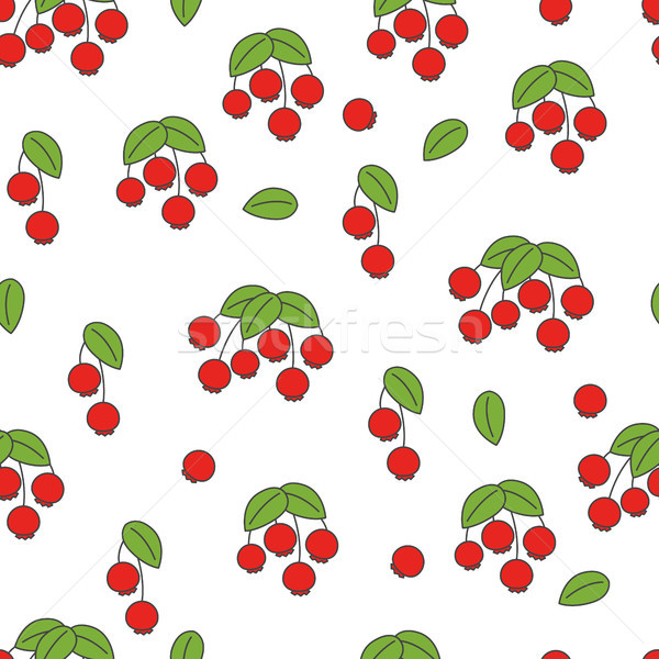 Rose Hip Flat Vector Seamless Pattern on White Stock photo © robuart