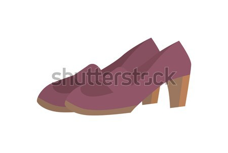 Pair of Shoes on Short Heels Vector Illustration Stock photo © robuart