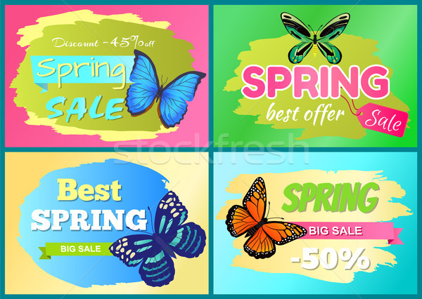 Spring Offer Sale Stickers Set Half Price Discount Stock photo © robuart