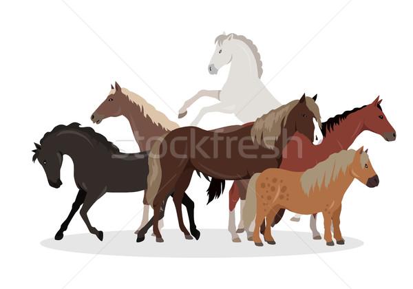 馬 スタイル ベクトル ウェブ バナー グループ ストックフォト © robuart