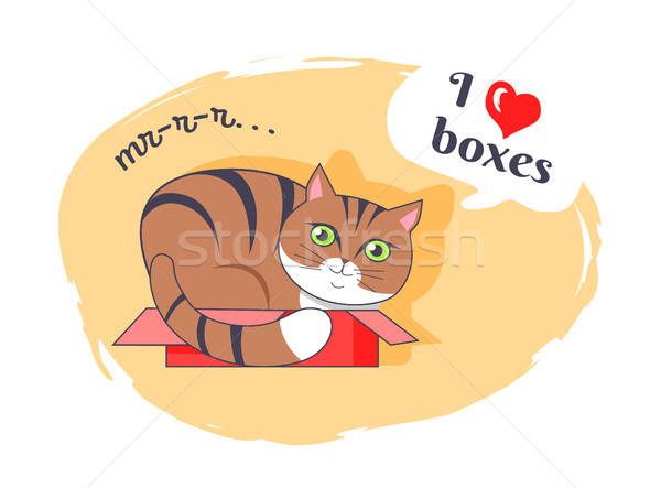 I Love Boxes Beautiful Kitty Vector Illustration Stock photo © robuart