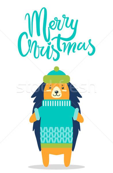 веселый Рождества Cute еж Hat Сток-фото © robuart