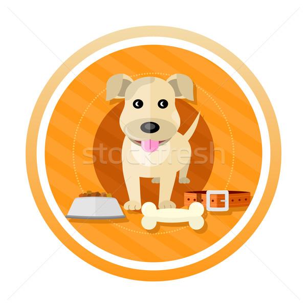 Hungry dog Stock photo © robuart