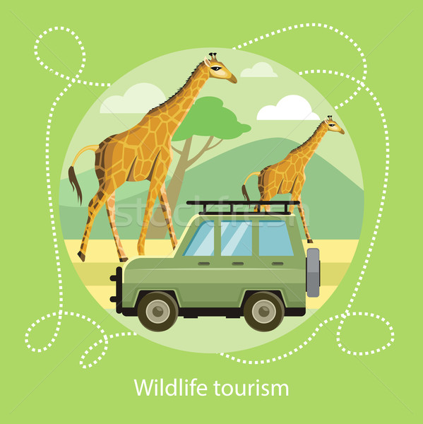 Wildlife Tourism. Icon of Traveling, Vacation Stock photo © robuart