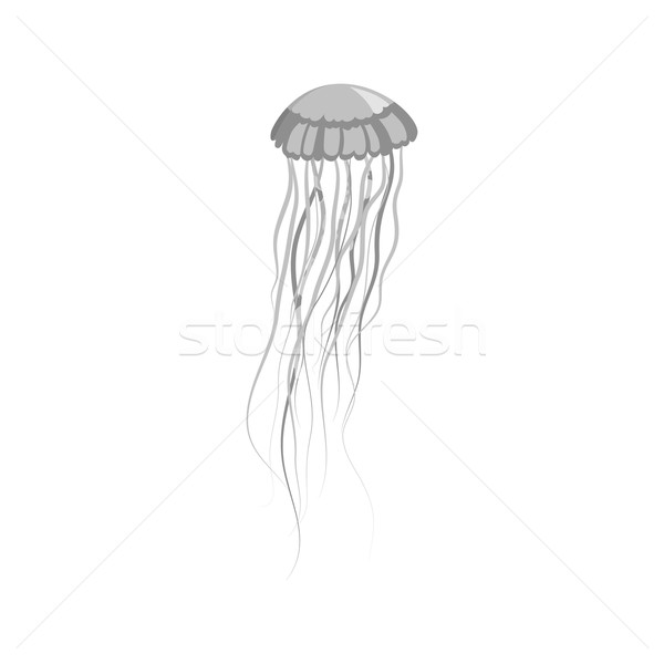 Monochrome Jellyfish Floating in Space Stock photo © robuart