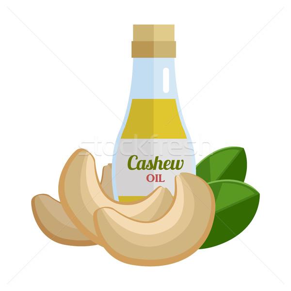 Kesudió olaj terv diók vektor egészséges étel Stock fotó © robuart