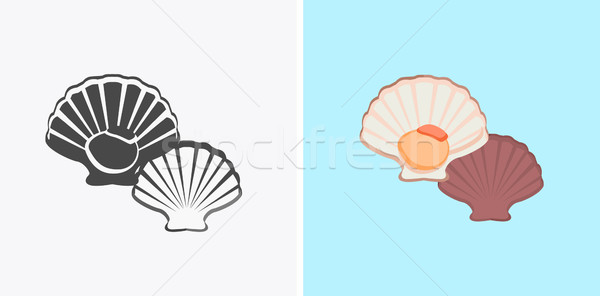 Oysters Variations Vector Illustration Stock photo © robuart