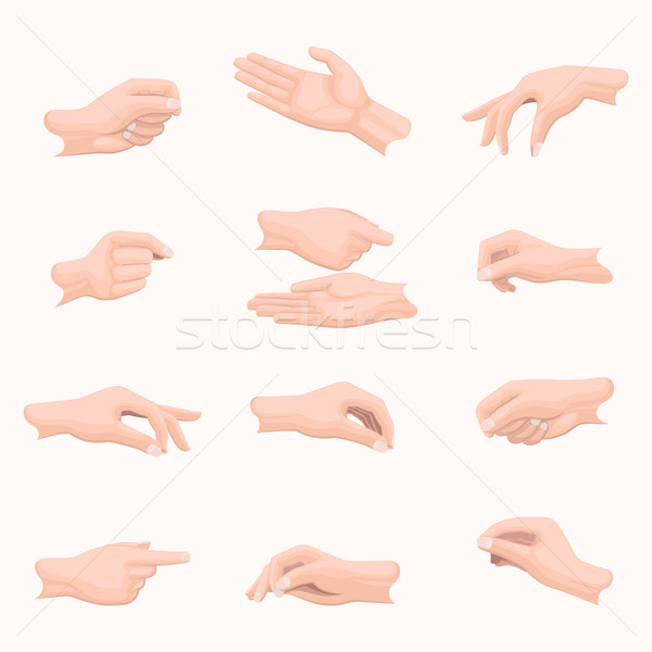 Realistic Hand Set with Fingers Positions on White Stock photo © robuart