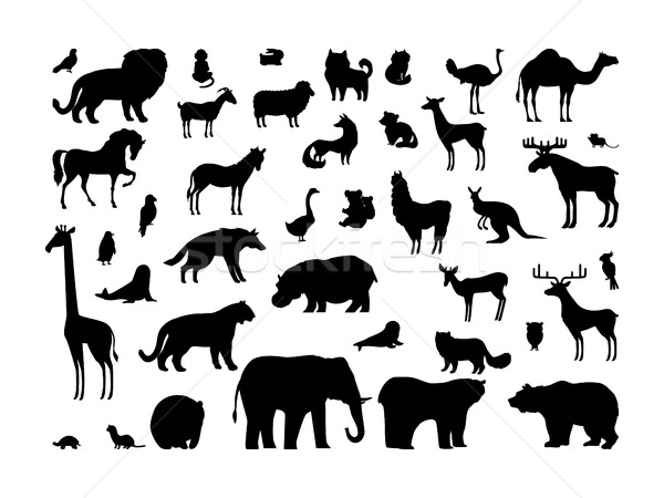 Animals Silhouettes Set Stock photo © robuart