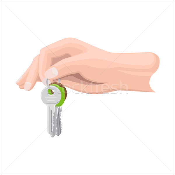 Arm Holds Bunch of Keys by Key Ring Illustration Stock photo © robuart