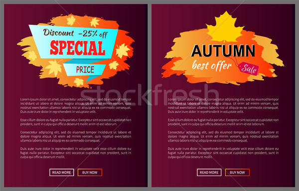 Stock photo: Special Best Offer Discounts Autumn Big Sale 2017
