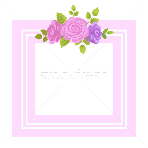 Decorative Border Rose Flowers with Green Leaves Stock photo © robuart