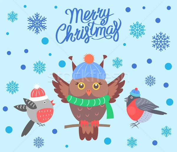 Foto d'archivio: Allegro · Natale · uccelli · poster · banner · saluto