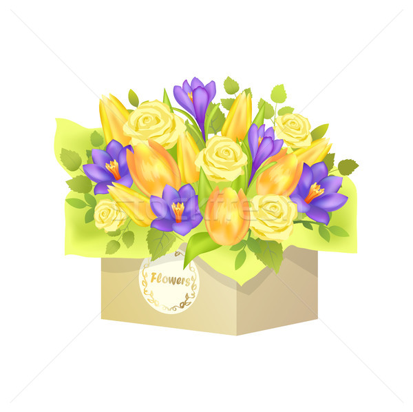 Bouquet of Roses and Tulip Vector Illustration Stock photo © robuart