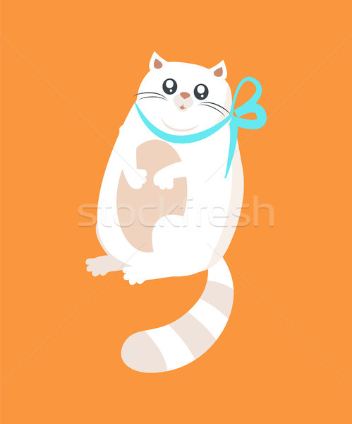 Pussy witte kat ingericht Blauw boeg Stockfoto © robuart