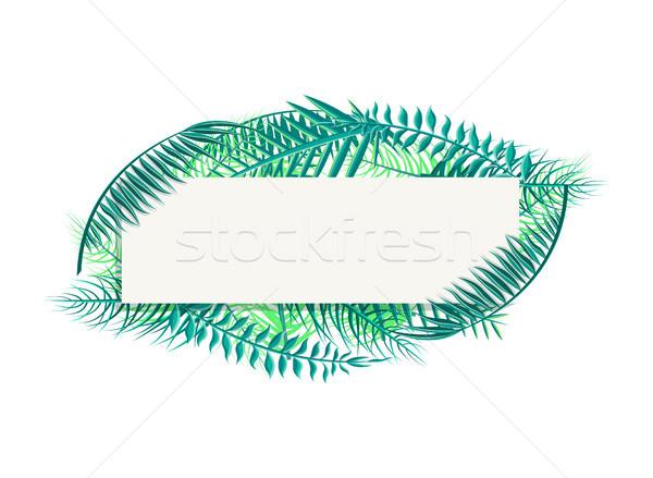 Banner hojas de palma espacio largo tropicales Foto stock © robuart